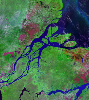 The UW team collected data at the mouth of the Amazon River (Credit: NASA)