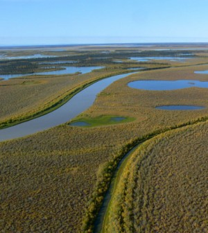Canada's Mackenzie River in the Northwest Territories (Credit: Tania Liu, via Flickr)