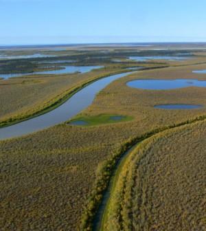 Canada's Mackenzie River in the Northwest Territories (Credit: Tania Liu, via Flickr)