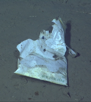 A discarded potato chip bag on the ocean floor captured by MBARI cameras (Credit: MBARI)