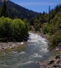 Scott River in the Scott Valley (Credit: Mark Levisay, via Flickr)