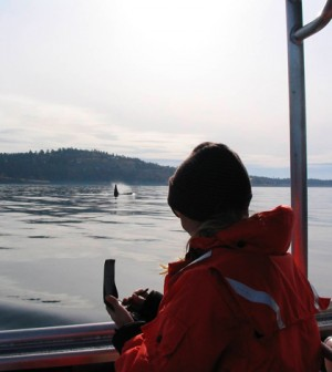 Researcher on the Puget Sound (Credit: NOAA)