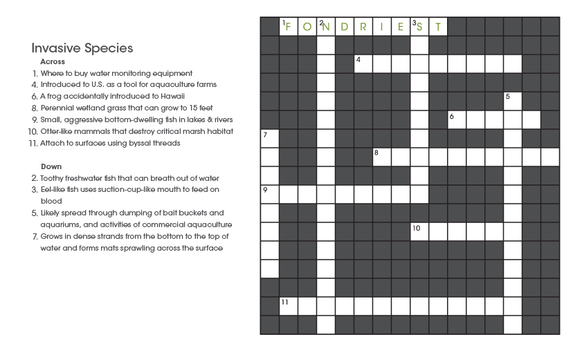 crossword_summer2013