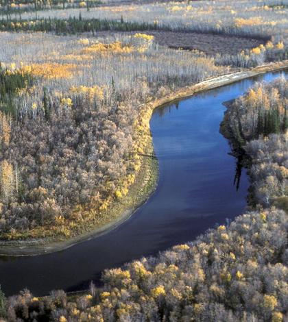 Beaver Creek in the Yukon Flats (Credit: David Spencer, U.S. Fish and Wildlife Service)