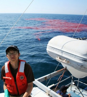 Graduate student Jun Choi and the large dye plume just after release (Credit: Credit: Cary Troy)