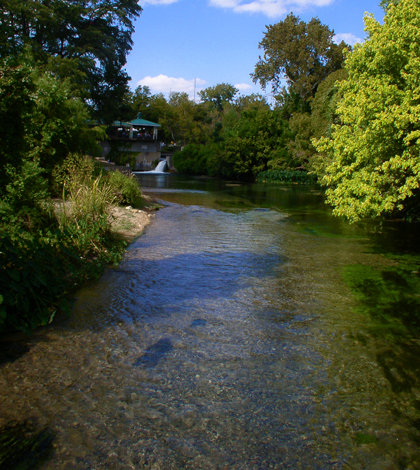 The San Marcos River downstream from its headwaters (Credit: WisdomFromIntrospect, via Wikimedia Commons)