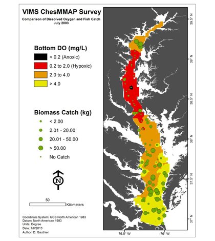 The large dead zone that developed in Chesapeake Bay in the late summer of 2003 in red and fish catches in green. (Credit: VIMS)
