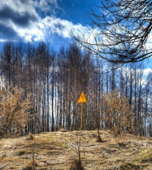 Radioactivity warning sign outside of Chernobyl's forests (Credit: Timm Suess, Wikimedia Commons)