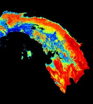 Image: Carbon map of Panama (Credit: Carnegie Institution for Science)