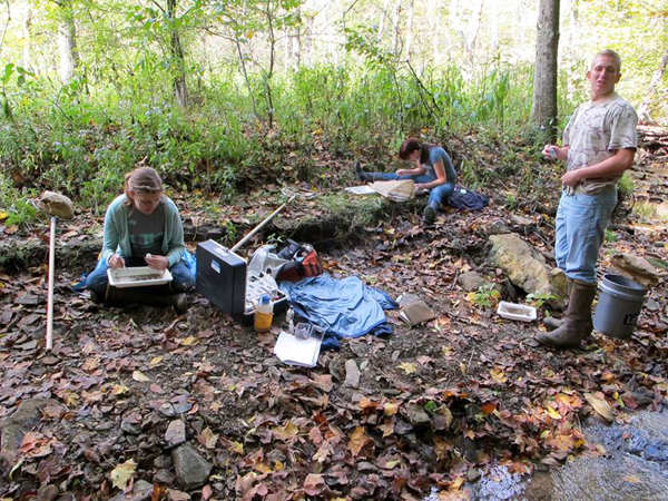 This students also have stream monitoring data at their disposal (Credit: Jamie March)