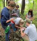 William and Jefferson College students pursue ecology studies at the Abernathy Field Station (Credit: Jamie March)