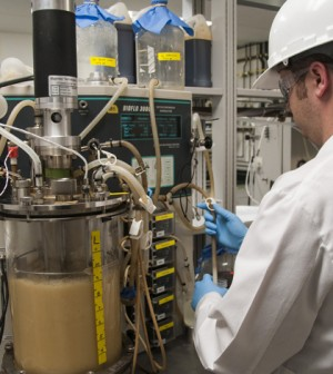 Alltech's Algae Research and Production Facility in Winchester, Kentucky. (Credit: Alltech)