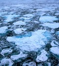 Arctic ice (Credit: Pink floyd88 a, via Wikimedia Commons)
