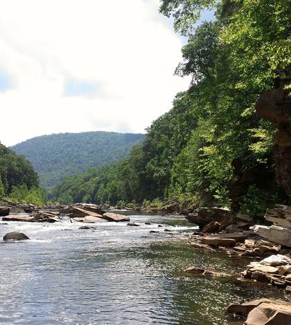 Cheat River (Credit: David Riggs, via Flickr)