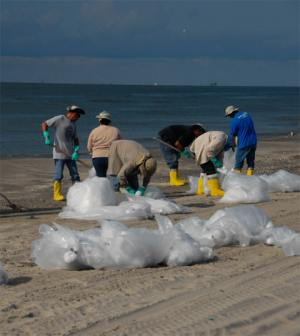 Workers clean a beach after the Deepwater Horizon spill (Credit: National Institute for Occupational Safety and Health)