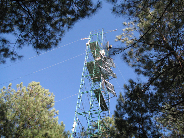A flux tower measures CO2 exchange in a North Carolina forest (Credit: Michael Gavazzi/USDA Forest Service)