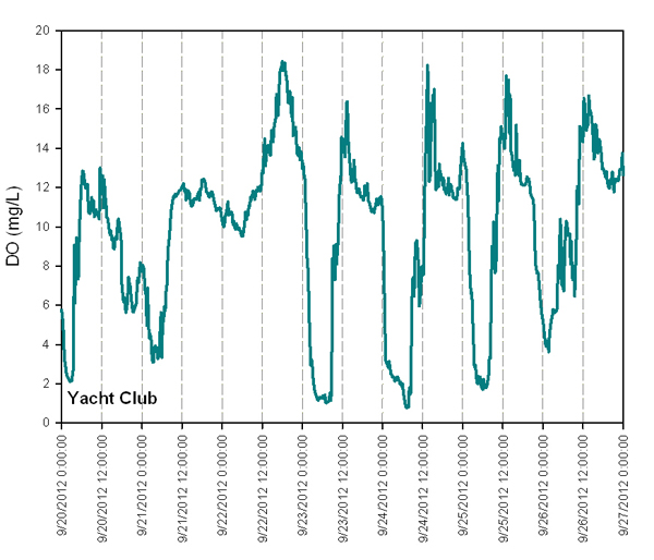 Graphed data collected at the Quartermaster Yacht Club shows swings in dissolved oxygen (Credit: Kimberle Stark)