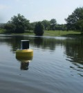 A data buoy floats on 'The Gunk' on the SUNY New Paltz campus
