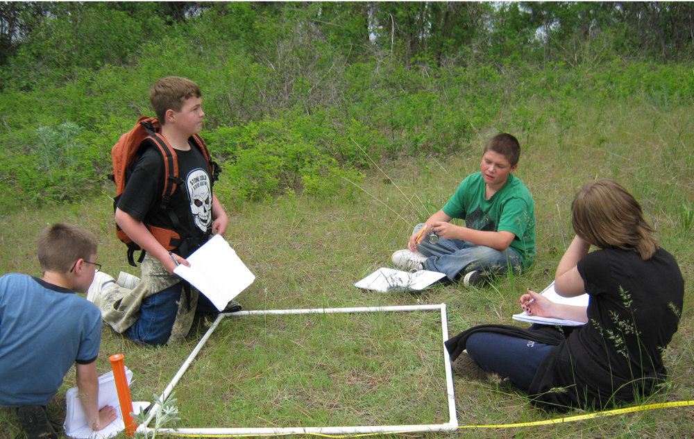 """""""Students wanted to see how many caterpillars were at their site. So they set up some random transects and used the quadrat to sample along the transects,"""" Elvidge said. """"They didn't find any caterpillars."""" (Credit: National Park Service)"""