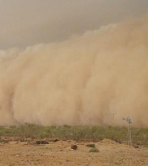Dust storm in South Australia (Credit: J Kemp, CSIRO)