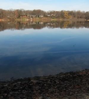 Woods Lake in Kalamazoo where road salt runoff has increased sodium and chloride levels soaring (Credit: Lindspetrol, via Flickr)