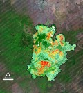 Burn severity map of Arizona fire (Credit: USGS, NASA Goddard Space Flight Center)