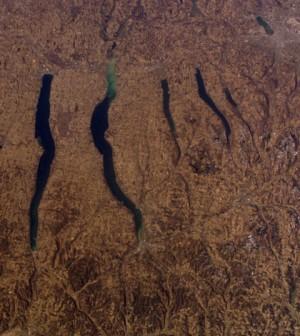 Several of New York's Finger Lakes (Credit: NASA)