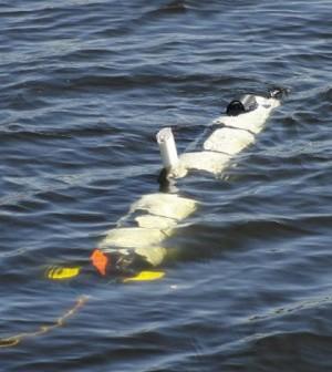 The Iver 3 autonomous underwater vehicle (Credit: Michigan Tech)