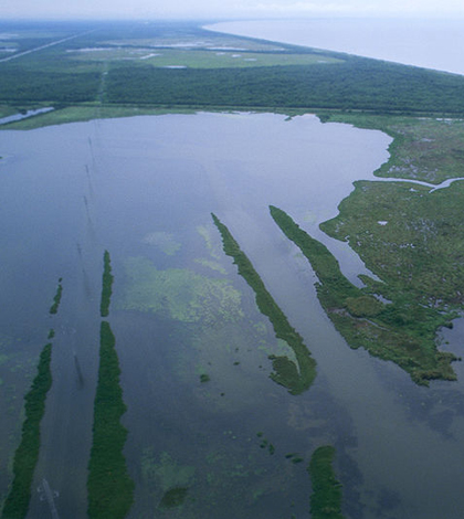 Aerial view of Louisiana wetlands (Credit: U.S. Fish and Wildlife Service)