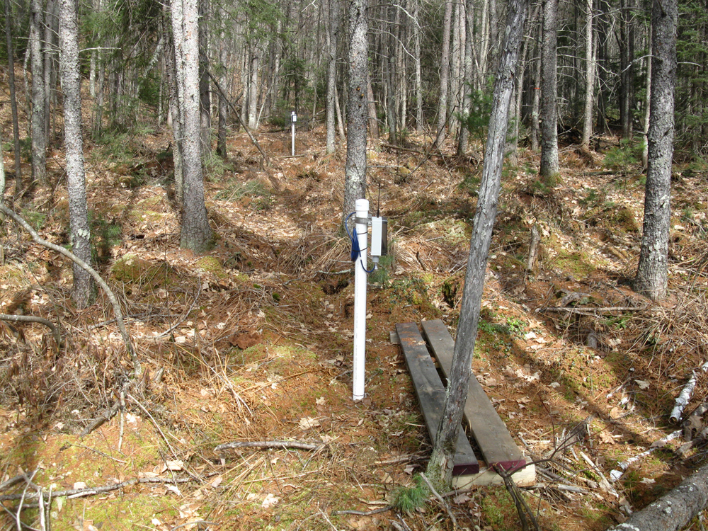 Peatland monitoring wells track the level of the water table level