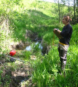 Allison Neils sampling stream macroinvertebrates in a forested reach. (Credit: Mike LeMoine)