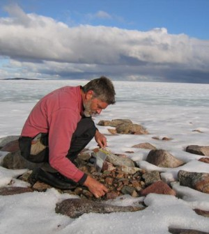 Gifford Miller collecting dead plant samples from beneath a Baffin Island ice cap. University of Colorado.