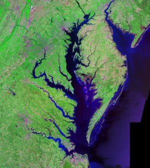 An aerial view of Chesapeake and Delaware bays from the Landsat satellite (Credit: USGS, vis Wikimedia Commons)