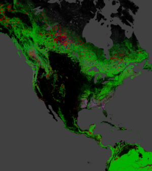 Red indicates forest loss, blue is gain, and green is forest extent(Credit: Nasa/University of Maryland)