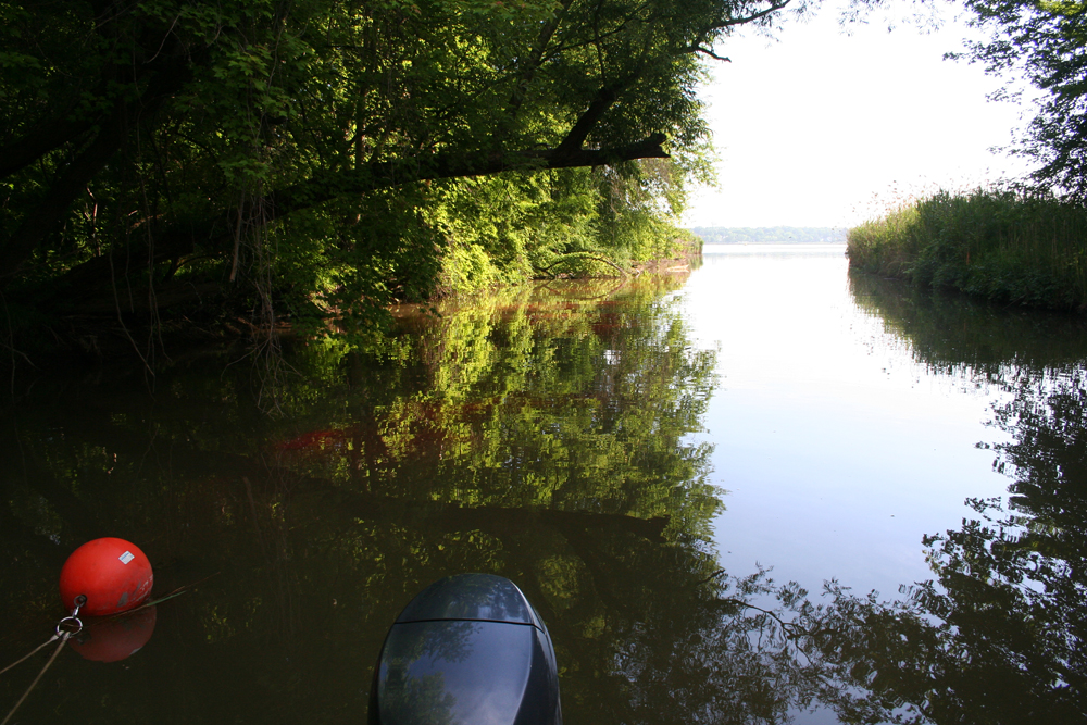 View from the location of the dye release site on Ninemile Creek looking toward the mouth of the creek and Onondaga Lake beyond (Credit: Upstate Freshwater Institute)