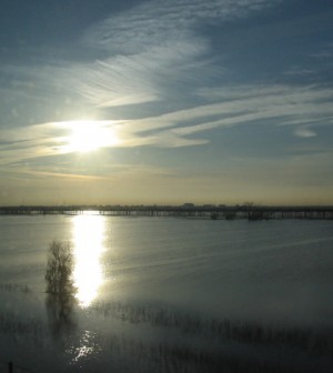 Flooded Yolo Bypass (Credit: Steven Gross, via Wikimedia Commons)