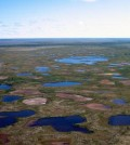 Desiccated lakes in Northern Canada (Credit: Hilary White)