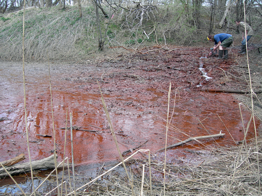 The water from this spring near Montezuma, N.Y. is three times saltier than seawater. The red color is the result of oxidized iron in the the water. (Credit: Tony Eallonardo)