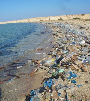 Plastic pollution on an Egyptian beach (Credit: Vberger, via Wikimedia Commons)
