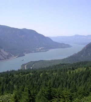 Columbia River Gorge as seen from Dog Mountain (Credit: Cacophony , via Wikimedia Commons)