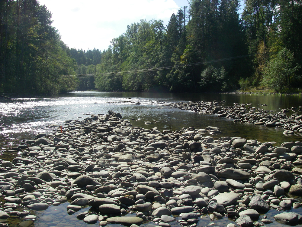 A view of the Elwha River downstream of the Elwha Dam in 2007 before removal (Credit: Amy Draut)