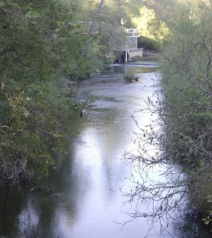 San Lorenzo River at the entrance to Henry Cowell Redwoods State Park, Santa Cruz County, Calif. (Credit: Ken, via Wikimedia Commons)
