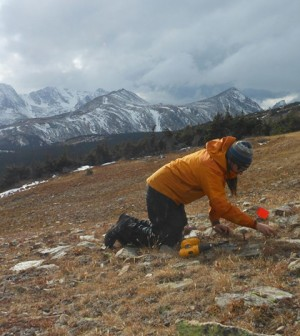 Installing gridded arrays of temperature data loggers to monitor the fraction of snow cover on the ground, crucial for validation of Landast and MODIS-derived snow cover estimates. (Credit: USGS)