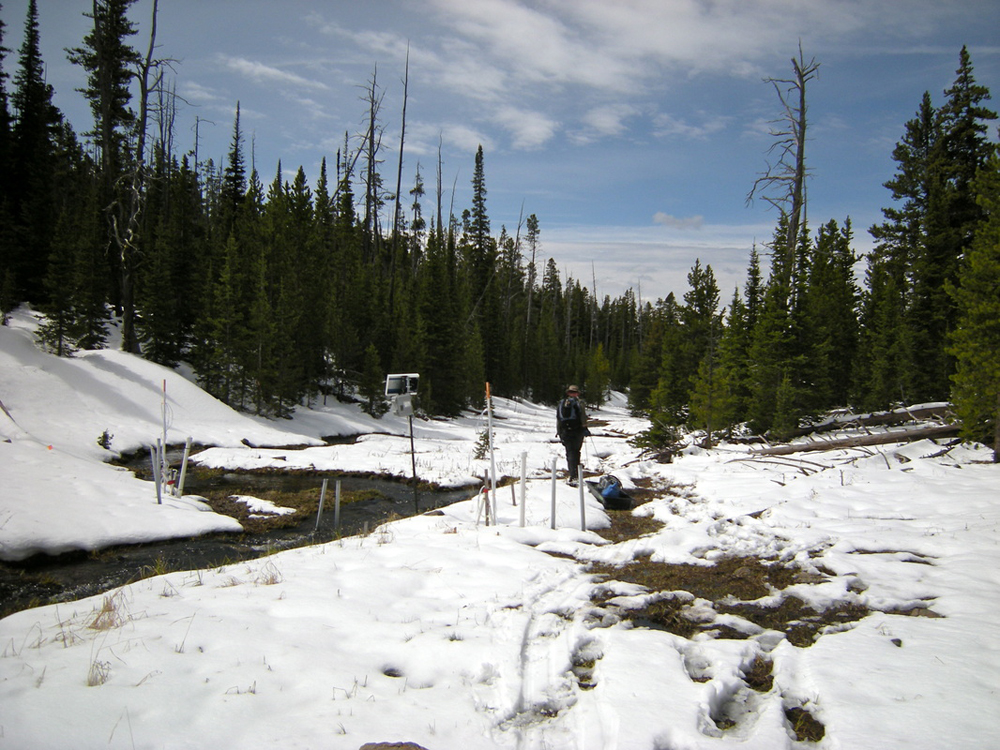 Hauling equipment during snowmelt in the Tenderfoot Creek Experimental Forest (Credit: Erin Seybold)