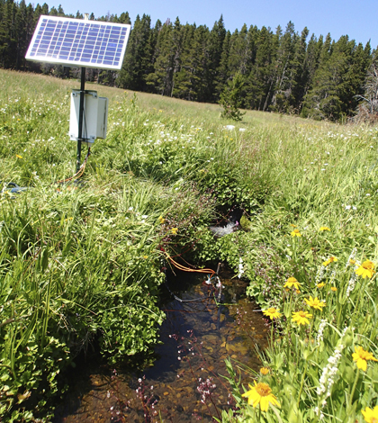A sensor station on a stream near the site where it emerges from the ground in Tenderfoot Creek Experimental Forest (Credit: Erin Seybold)