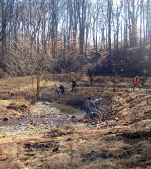 Volunteers working on a stream restoration on Sulphur Springs in Northeast Ohio that could provide additional habitat for Ohio brook trout (Credit: Cleveland Metroparks)