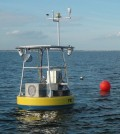The Old Tampa Bay buoy in the water