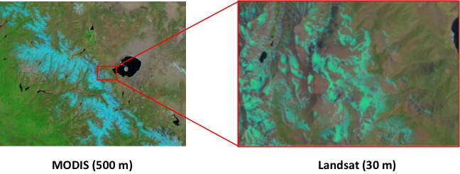 This illustration shows the finer scale achievable with the Landsat sensor over the MODIS sensor (Credit: USGS)