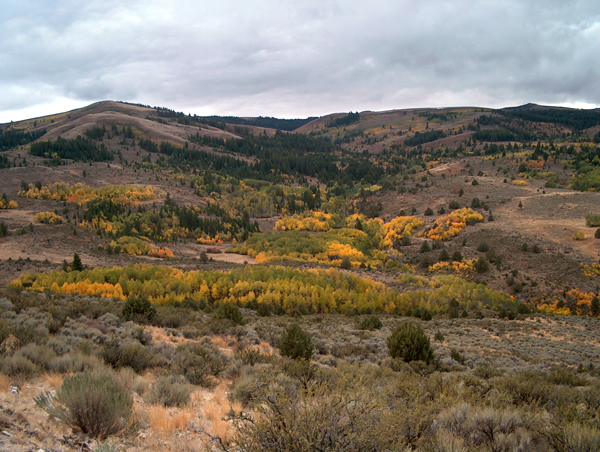 An example of the Reynolds Creek landscape (Credit:  U.S. Department of Agriculture)