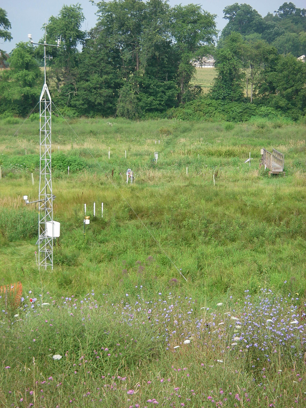 The StREAM Lab's weather station and transect of piezometers for groundwater sampling (Credit: W. Cully Hession)